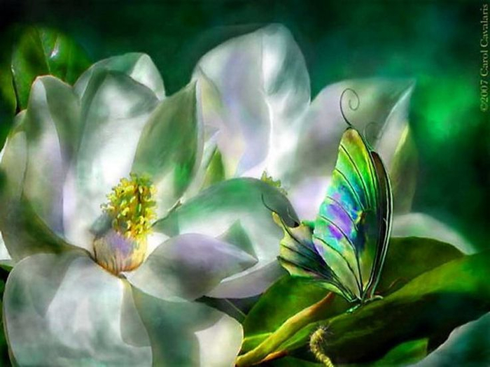 872fe4b875903acc10116da0686e87ea--art-flowers-flower-art (700x525, 316Kb)