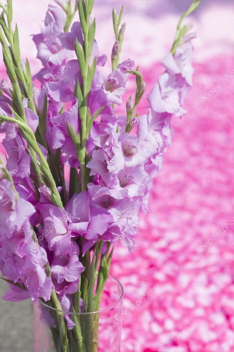 depositphotos_52335597-stock-photo-pink-gladiolus-flowers-bouquet-in (466x700, 347Kb)