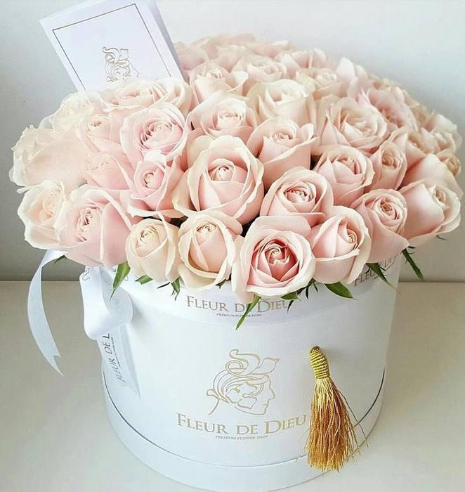 Крепкого, розы в коробке открытка