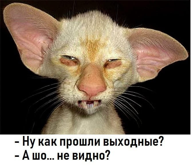 http://img1.liveinternet.ru/images/attach/d/2/149/383/149383431_64870132_2416590705243662_8468326587333345280_n.jpg