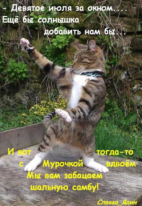 Котоматрица - 3 - Страница 40 149547793_RRS9