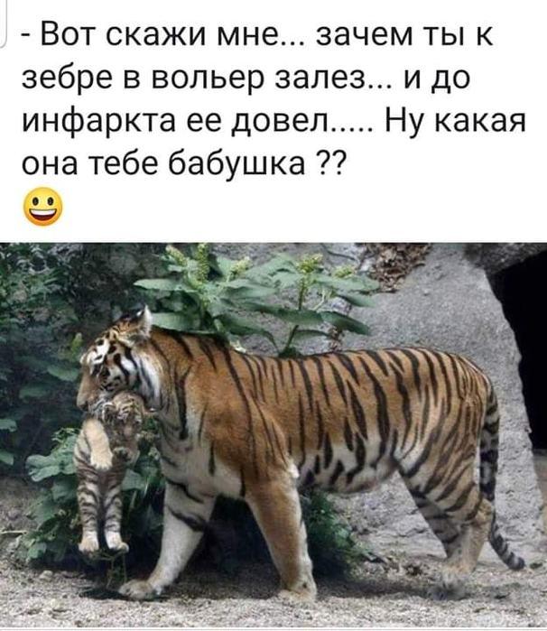 http://img1.liveinternet.ru/images/attach/d/2/149/830/149830107_67924159_441234886464661_7647699632901849088_n.jpg