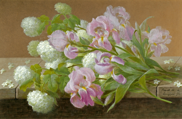 1318767191_www.nevsepic.com.ua-irises-and-hydrangeas (700x457, 394Kb)