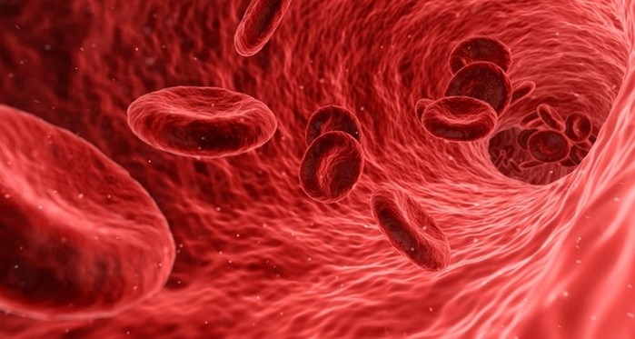 Здоровье по группе крови: какие болезни грозят каждому «типу»?