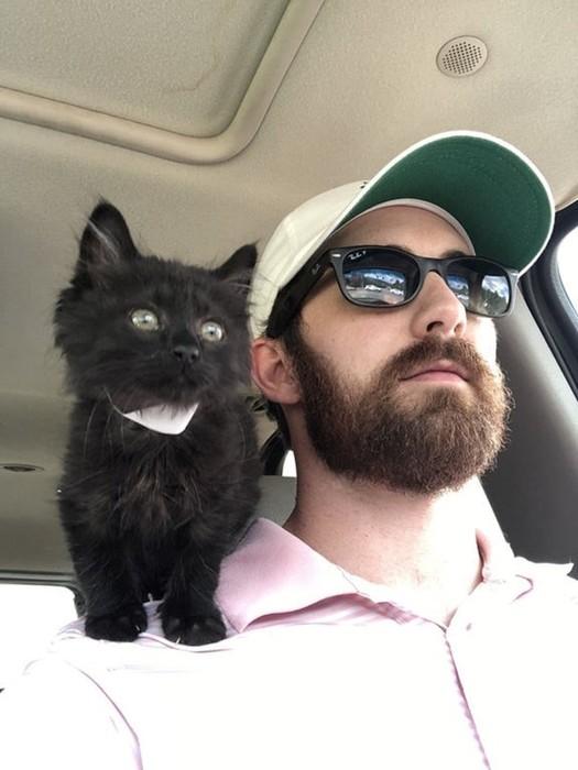 15 фото только что усыновлённых котиков
