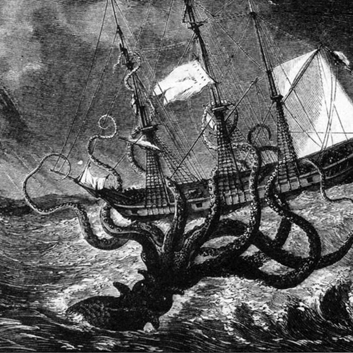 5 страшных случаев нападения осьминогов на человека