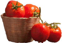 kisspng-cherry-tomato-vegetarian-cuisine-vegetable-food-su-bamboo-basket-of-tomatoes-5a9b7e1d58bfc1.5996478315201398053635 (200x141, 12Kb)