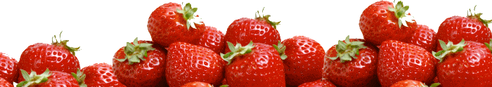 Strawberry-Slider (700x124, 37Kb)
