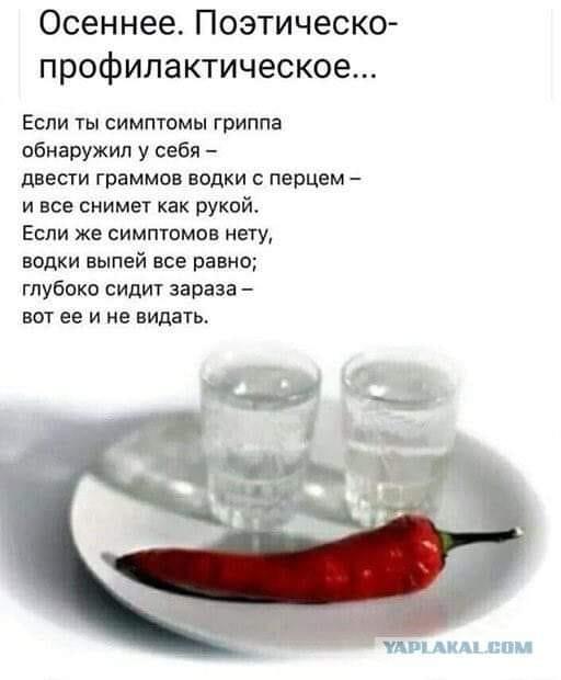 https://img1.liveinternet.ru/images/attach/d/2/150/414/150414181_3416556_72939062_202459567413404_4846715184439361536_n.jpg