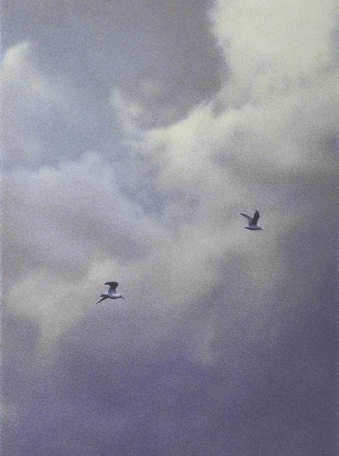Clouds And Seagulls2013 — копия (490x659, 101Kb)