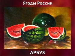 5107871_ARBYZ (250x188, 86Kb)