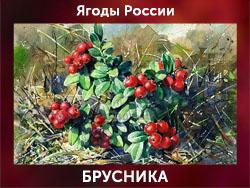 5107871_BRYSNIKA (250x188, 65Kb)