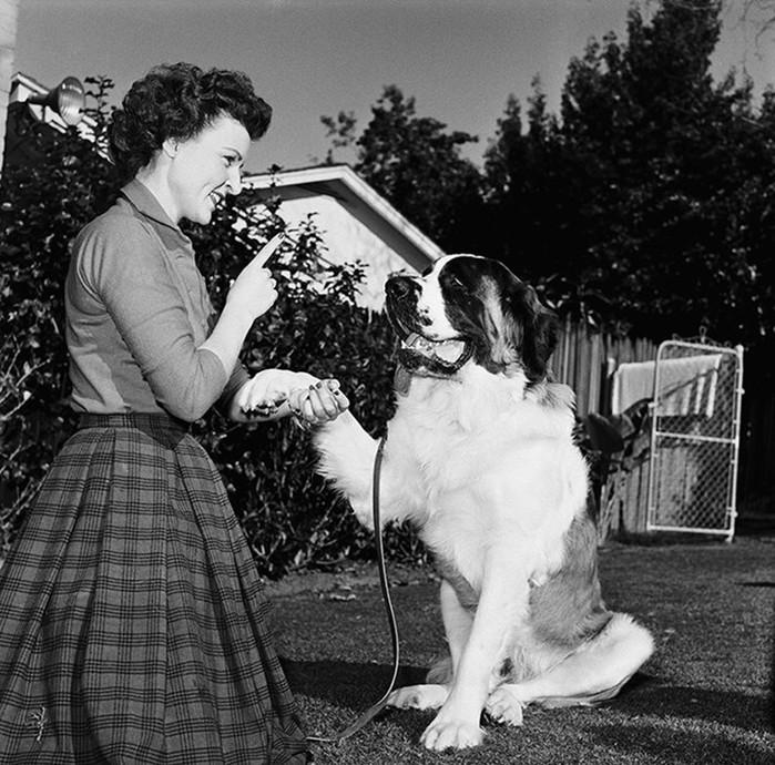 Фотографии знаменитостей со своими собаками