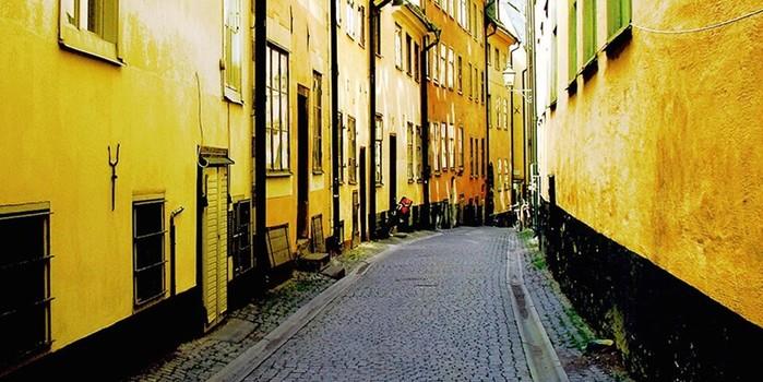 25 интересных фактов о шведском языке