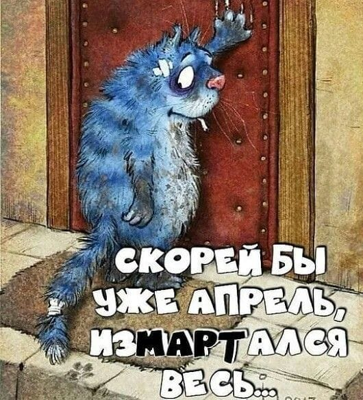 Котоматрица - 4 - Страница 18 151180525_QO5F5RIVGFk