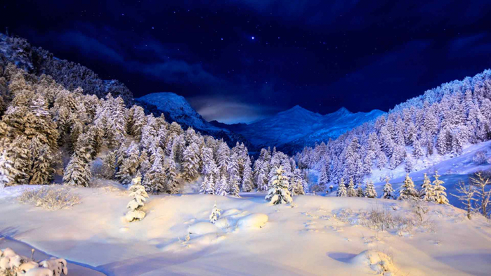 2017Winter_Winter_night_in_a_snowy_forest_111408_ (700x393, 324Kb)
