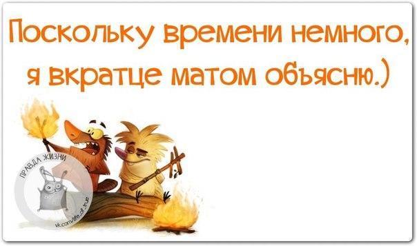 5672049_1454524762_frazki24 (604x357, 30Kb)