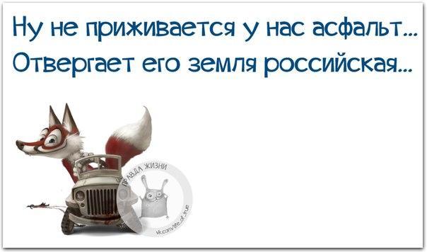 5672049_1454524834_frazki3 (604x356, 27Kb)