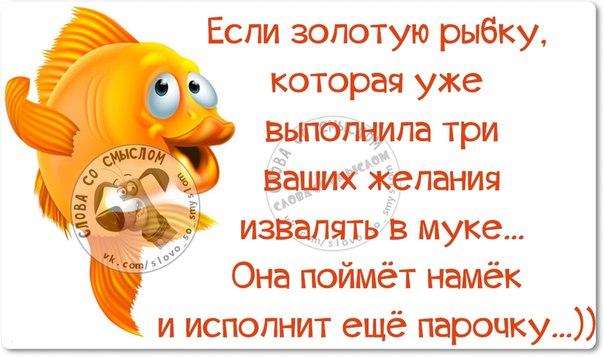 5672049_134374773_5672049_1457728875_frazki23 (604x357, 53Kb)