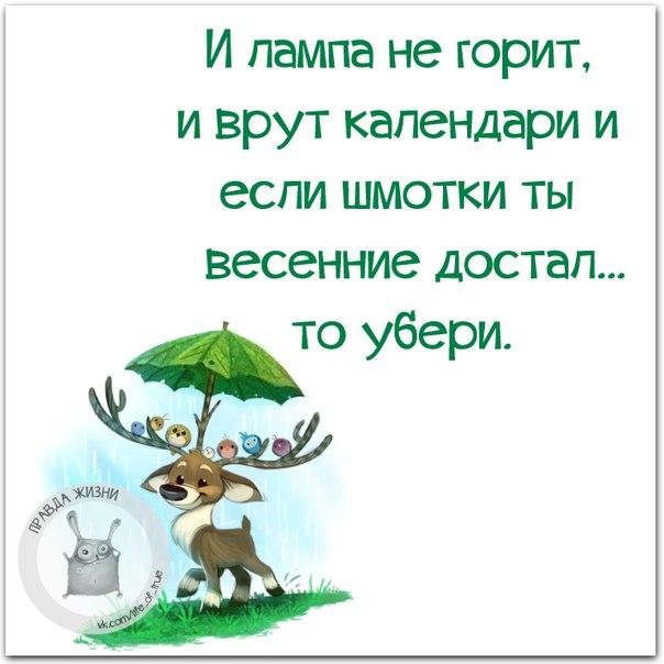 5672049_134577121_5672049_1458850831_frazki18 (604x604, 53Kb)
