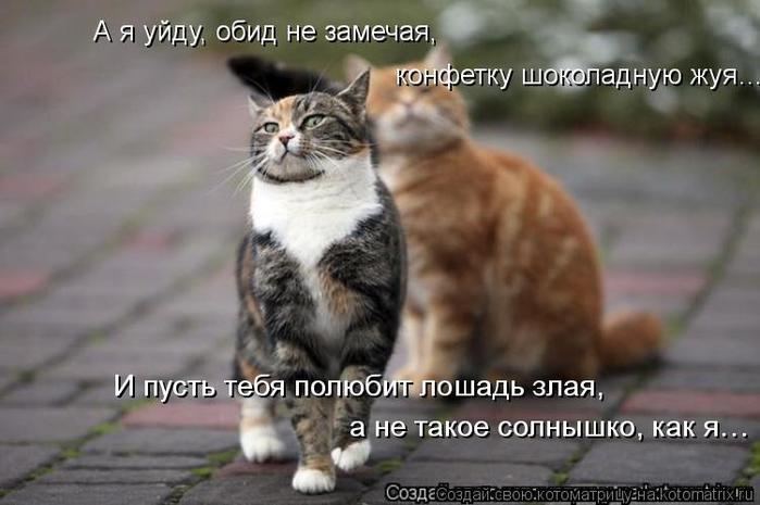 Котоматрица - 4 - Страница 26 152353761_2714816_kotomatritsa_fN