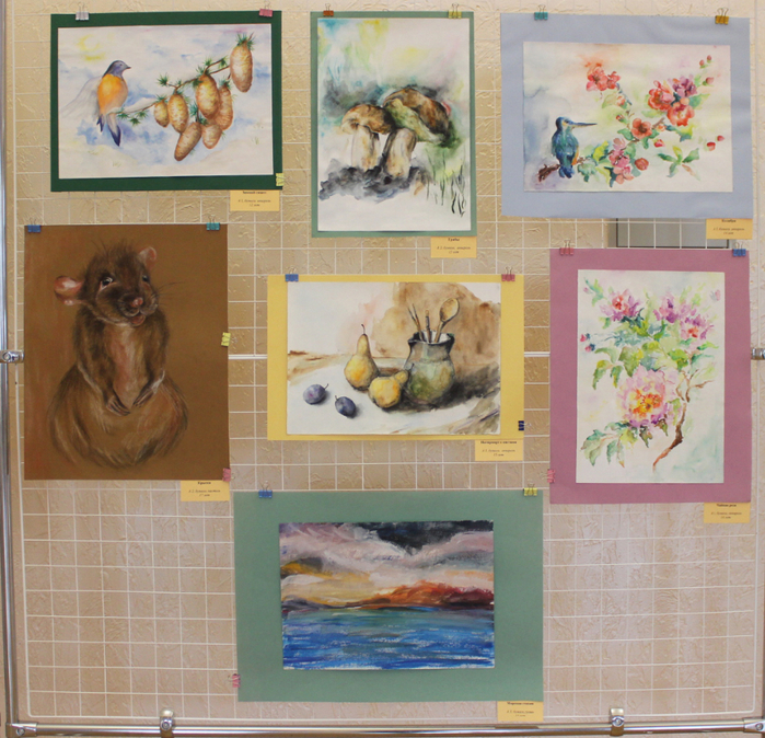 Персональная выставка Дарьи Новиковой