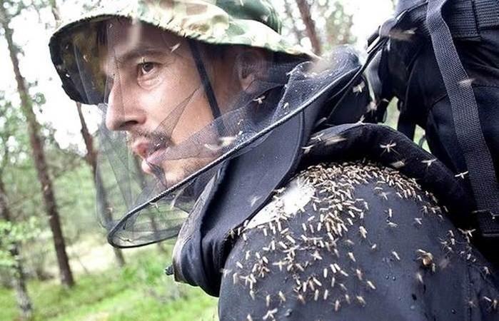 Как в тайге защищаются от клещей, комаров и мошек