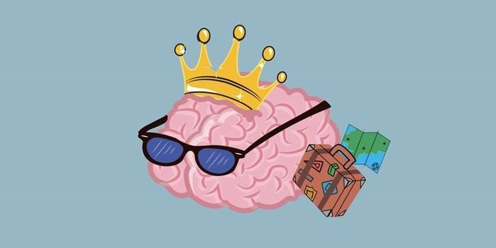 Что такое мозг? 20 интересных фактов