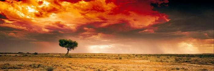 Питер Лик — самый дорогой фотограф в мире
