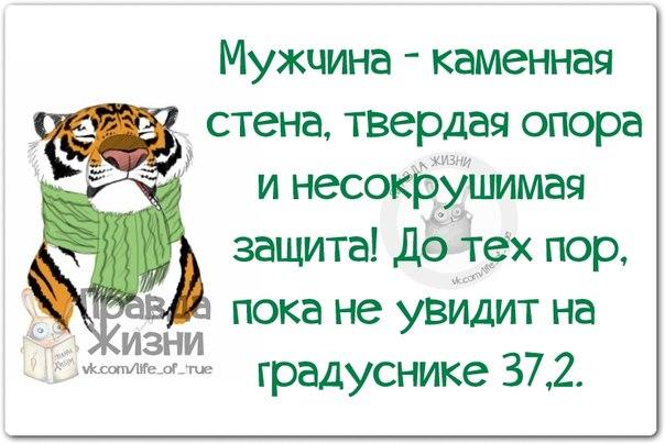 5672049_134357988_5672049_1396899720_frazochki17 (604x404, 55Kb)