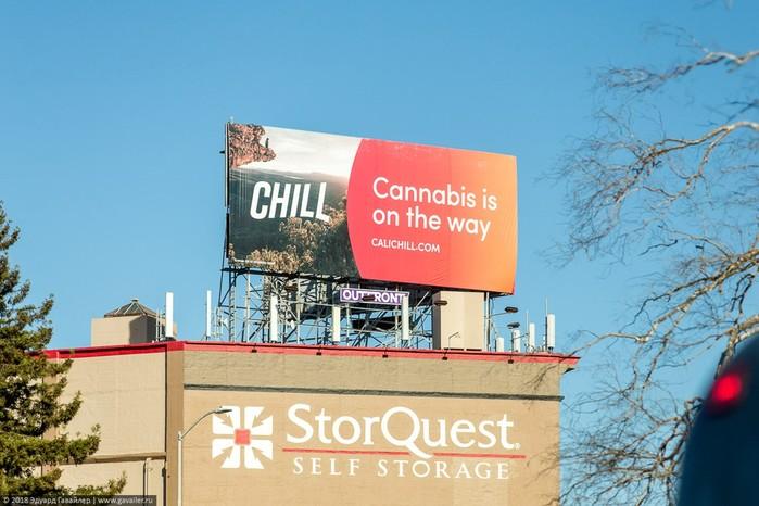Как выглядит магазин марихуаны в Калифорнии