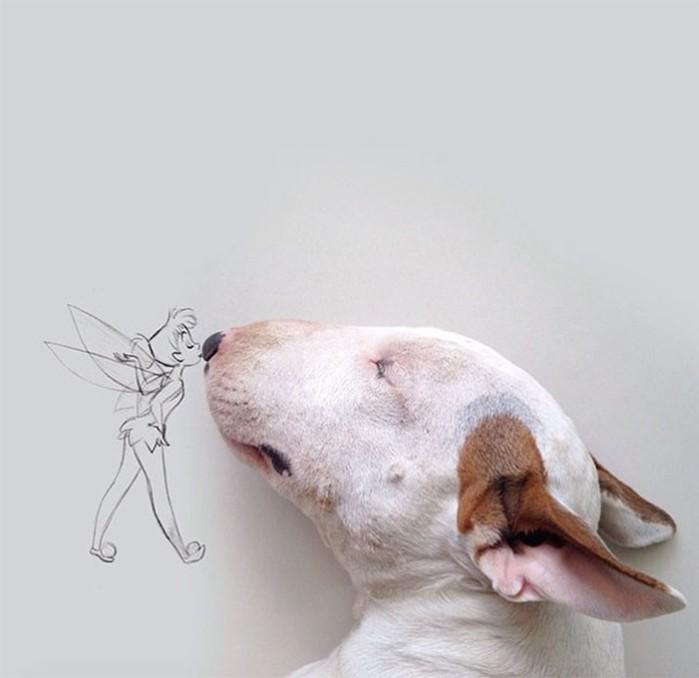Бультерьер стал героем интерактивного иллюстратора, которого бросила жена