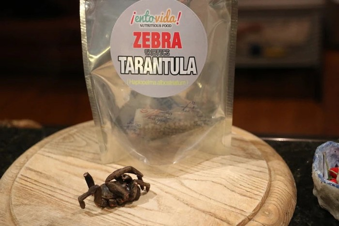 Галлюцинации имысли осмерти: что будет, если питаться жуками