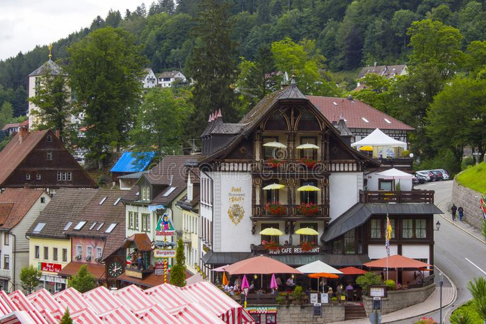 triberg-july-traditional-style-houses-schwarzwald-region-germany-triberg-black-forest-germany-106231676 (700x466, 406Kb)