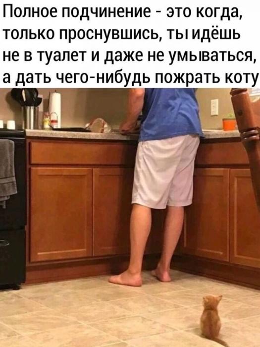 3416556_i_7 (525x700, 209Kb)