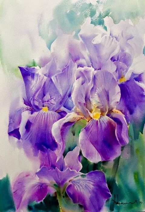 26388cde212f9abc38a2c7ddb956c153--watercolor-flowers-watercolor-paintings (479x700, 70Kb)