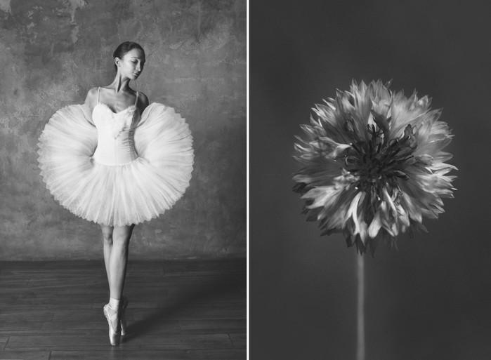 balerina-i-tsvety-fotograf-yuliya-artemeva-3 (700x513, 55Kb)
