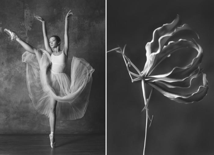 balerina-i-tsvety-fotograf-yuliya-artemeva-5 (700x510, 52Kb)