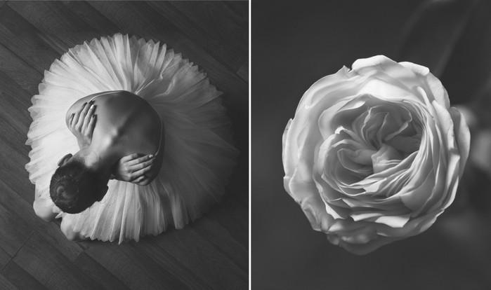 balerina-i-tsvety-fotograf-yuliya-artemeva-7 (700x414, 45Kb)
