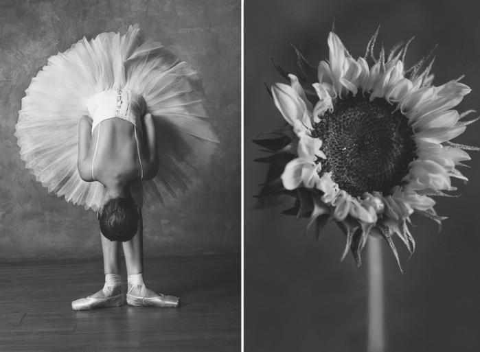 balerina-i-tsvety-fotograf-yuliya-artemeva-9 (700x513, 60Kb)
