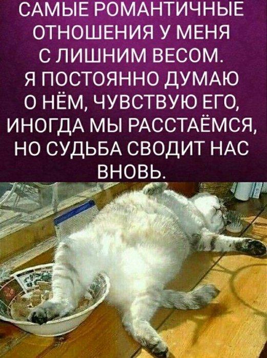 4809770_64 (521x700, 95Kb)
