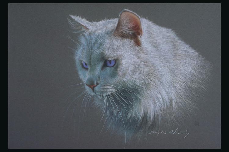 Кошки ( Коты ) Рисованные - Животные Обои и Фото.