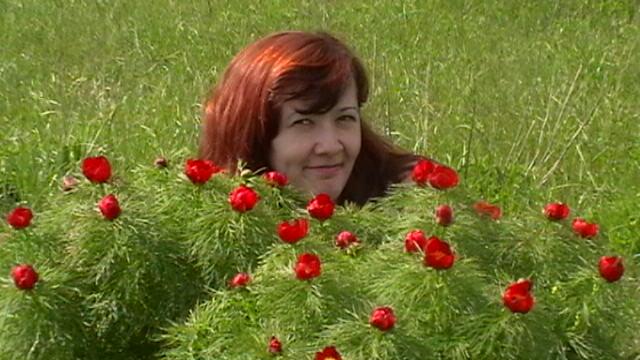 воронцы фото цветы