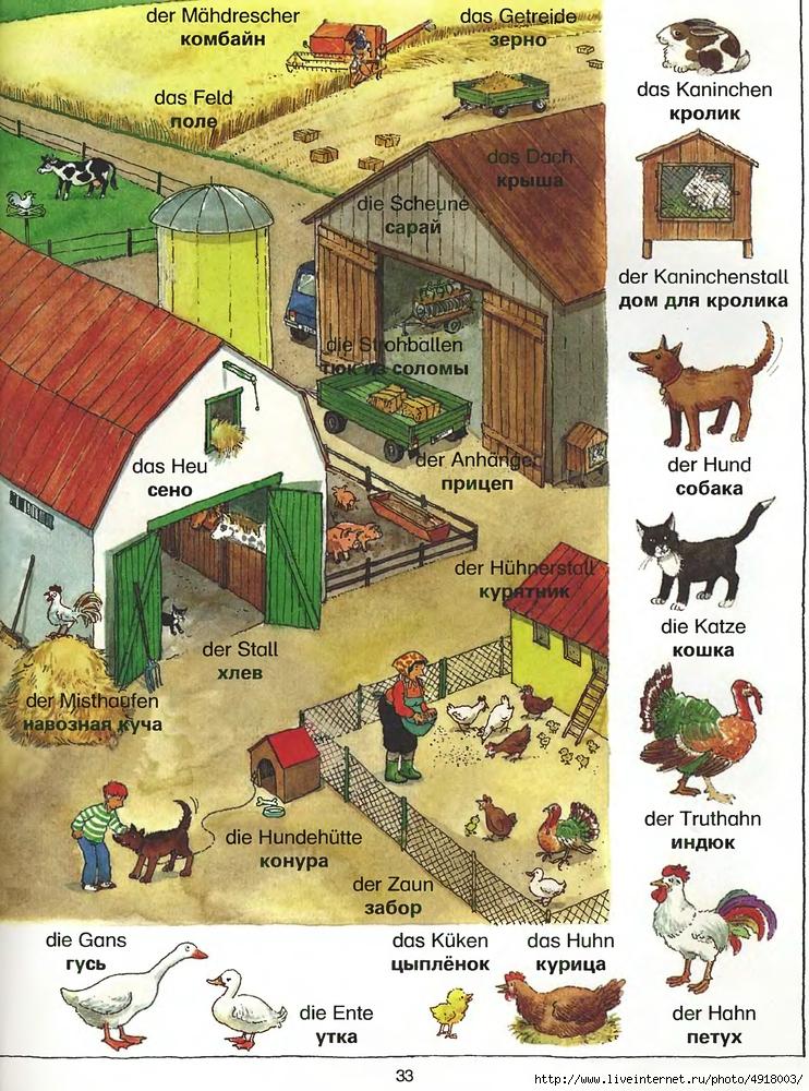 Картинки с немецкими словами на тему дом, комиссариаты