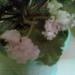 4793053_cube_foto084.jpg