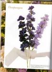 Хелен Гибб.  Изысканные цветы из лент.  Прочитать целикомВ.